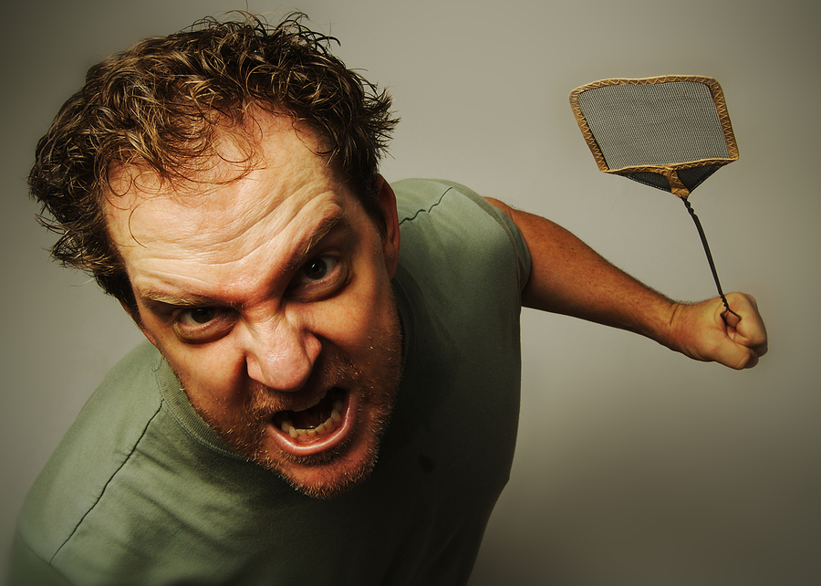 Warning Signs You Need Anger Management Classes
